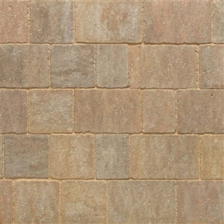 Trident Paviors 240mm x 160mm x 60mm Forest Blend