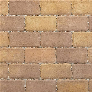 Permeapave Block Paving 200mm x 100mm x 60mm Forest Blend