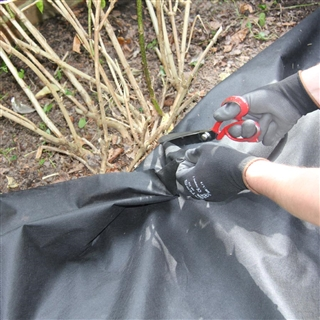 Weedtex Weed Control Fabric 50GSM 1m x 15m