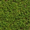 Trinity Platinum (40mm) Low Maintenance Artificial Turf 4m Width image 0