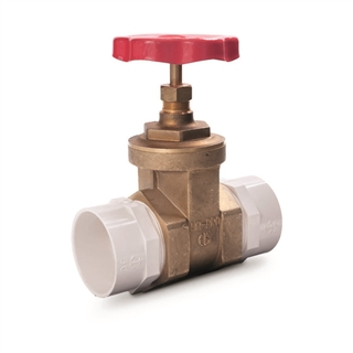 "Saniflo 2"" Isolation Valve for Sanicubic 1109"