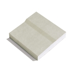 GTEC Plank Plasterboard 2400mm x 600mm x 19mm Tapered Edge